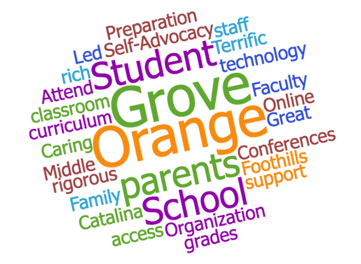 Positive Character traits of Orange Grove Students